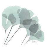 Ginkgo in Pale Blue II Posters by Albert Koetsier
