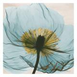 Dream in Pale Blue Kunst af Albert Koetsier
