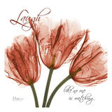 Royal Red Tulip, Laugh Prints by Albert Koetsier