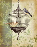 Botanical Birdcage I Prints by Paul Brent