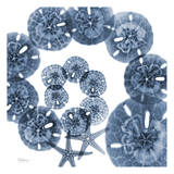 Collage of Sand Dollars and Starfish Prints by Albert Koetsier