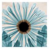Sogno blu Poster di Albert Koetsier