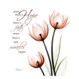 Swaying Tulips Pink, Hope Reprodukcje autor Albert Koetsier