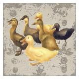 Dancing Ducks Prints by Carol Kemery