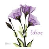 Gentian Believe Poster by Albert Koetsier