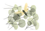 Explosion of Spring Kunst af Albert Koetsier