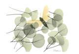 Albert Koetsier - Explosion of Spring Reprodukce