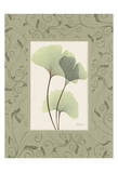 Ginkgo With Green Damask Frame Print by Albert Koetsier