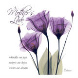 Mothers, Purple Tulips Art by Albert Koetsier