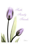 Purple Tulips, Faith Prints by Albert Koetsier