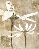 Pencil Floral II Kunstdrucke von Avery Tillmon