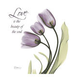 Swaying Tulips Purple, Love Posters by Albert Koetsier