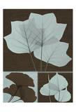 Misc. Leaves Blue on Brown Poster by Albert Koetsier