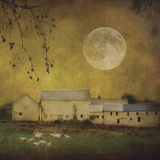 Sheep Under a Harvest Moon Art by Dawne Polis