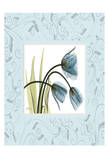 Tulips With Blue Damask Frame Prints by Albert Koetsier