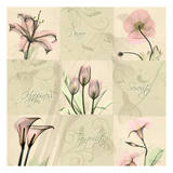 Spring Squares I Prints by Albert Koetsier