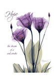 Purple Tulip, Hope Posters par Albert Koetsier
