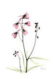 Pink Spring Snowdrop Posters by Albert Koetsier