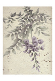 Wisteria Poster by Carol Kemery