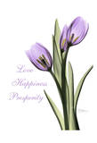 Purple Tulips Love Happiness Prints by Albert Koetsier