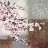 Cherry Bloom II Affiches par Danielle Nengerman