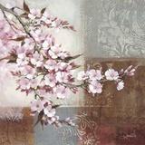 Cherry Bloom II Prints by Danielle Nengerman