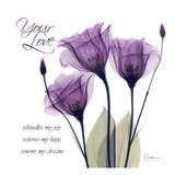 Your Love, Purple Tulip Prints by Albert Koetsier