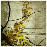 Yellow Kerala Blossoms Print