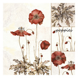 Poppies Galore Art by Carol Kemery