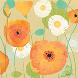 Daisies and Poppies I Posters par Susy Pilgrim Waters