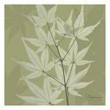 Leaves Galore on Green Prints by Albert Koetsier