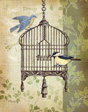 Botanical Birdcage II Prints by Paul Brent