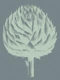 Artichoke, no. 7 Posters by  Botanical Series