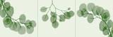 Leaf Triple in Green Prints by Albert Koetsier