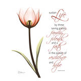 Swaying Tulip Pink, Life Prints by Albert Koetsier