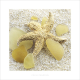 Sea Glass, Yellow Prints by Celia Pearson