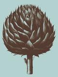Artichoke, no. 18 Prints by  Botanical Series