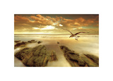 Soft Sunrise on the Beach, no. 4 Impression giclée par Carlos Casamayor