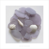 Sea Glass, Lavender II Poster by Celia Pearson