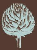 Artichoke, no. 17 Posters by  Botanical Series