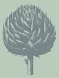 Artichoke, no. 8 Prints by  Botanical Series