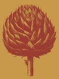 Artichoke, no. 15 Posters by  Botanical Series