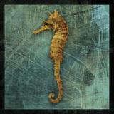 Seahorse Art by John Golden