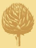 Artichoke, no. 19 Print by  Botanical Series