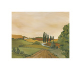 Sunny Tuscan Road Giclee Print by J. Clark