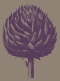 Artichoke, no. 14 Art