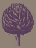 Artichoke, no. 14 Art by  Botanical Series