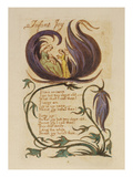 Infant Joy. from 'songs of Innocence' Giclee Print by William Blake