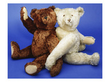 A Fine Steiff White Plush Covered Teddy Bear and a Fine Steiff Rich Cinnamon Plush Covered Teddy Giclee Print