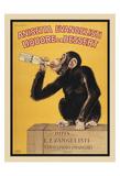 Carlo Biscaretti - Anisetta Evangelisti - Poster